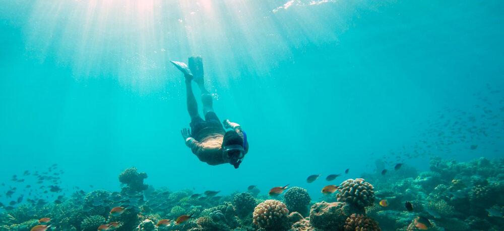 Red sea activities